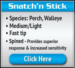 Snatchn-Stick